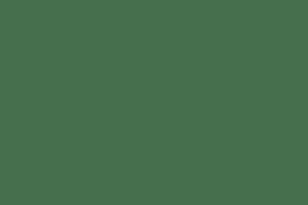 Pea & Hemp Protein Powder